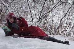 Reading Walden at Walden #1818 (Dan Meade) Tags: winter snow storm nature ma 50mm pond model december literature americana walden sr falco thoreau romanticism canon50mmf14usm outdoorshoot canon7d
