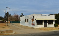 Freitas & Son Taxidermy (rickele) Tags: fish mural taxidermy fresno elk steelhead paintedsign taxidermist westfresno freitasandson
