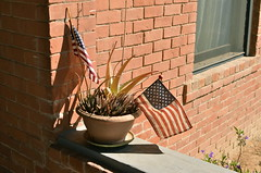 Pot-riotic (MPnormaleye) Tags: city cactus urban plants brick 35mm buildings flag pots utata pottery