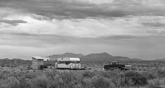 Home, Sweet, Home (swmartz) Tags: 2016 grandcanyon outdoors nature arizona