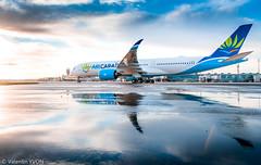 Mirror (vy.photographe) Tags: orly ory lfpo aéroport aéronautique avion grosporteur heavy aircraft airbus aircaraïbes a350 xwb a350xwb reflet crépuscule roulage taxi fhhav