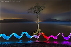 The lone tree (Pikebubbles) Tags: lightpainting lightpaintingtutorial lightjunkies longexposure longexposures nightphotography davidgillivernightnightographymoon davidgilliver davidgilliverphotography lightgraffiti creativephotography creative ribbons neon v24 lenser lenserv24 lights dance ribbonoflight scotland lochlomond milarrochy lone tree reflection refelections colours colors