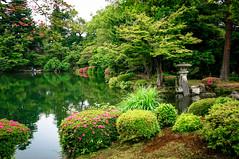 Kenroku-en (兼六園), the Six Attributes Japanese Zen Garden in Kanazawa (金沢) Japan (TOTORORO.RORO) Tags: kenrokuen 兼六園 japanese zen garden kanazawa japan historical kotojitoro lantern treearea tranquility pond lake