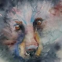 Black Bear (sushipulla) Tags: art artwork paint painting watercolour watercolors watercolor bear nature forest wildlife wild animals texture blackbear