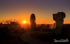 Art in the Broken Hill desert (CrazyNotion (wandering and wondering)) Tags: 2013 broke brokenhill desert sunset australia newsouthwales nsw outback art bensharif sculptures