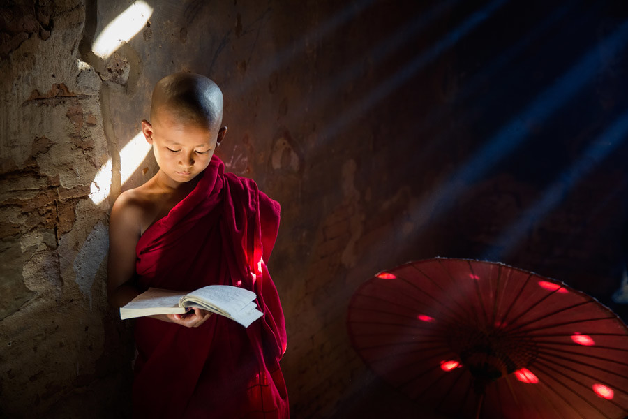 A young Buddhist monk reading