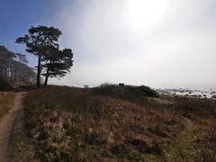 Fort in fog by the beach (vanstaffs) Tags: landscape beach fog fort