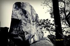 """Mama-Bhagne"" hill (Joy lens) Tags: abhijan satyajit ray birbhum bengal history mama bhagne hill nature"