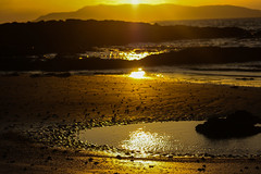 Beach Pool (A Costigan (off for a while)) Tags: beach sunlight light dawn sand water sea ocean irishsea lambayisland canon eos