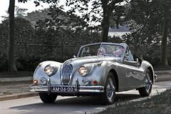 Jaguar XK 140 DHC 1956 (2836) (Le Photiste) Tags: clay jaguarcarsltdwhitleycoventryengland jaguarxk140dhc cj jaguarxk140dropheadcoupédhc britishsportscar britishicon silversportscar britishconvertible britishluxuryautomobile vianenthenetherlands thenetherlands 1956 am0690 sidecode1 artisticimpressions creativeimpuls canonflickraward beautifulcapture digitalcreations finegold hairygitselite bwsc lovelyflickr mastersofcreativephotography niceasitgets photographicworld soe simplysuperb simplybecause thebestshot thepitstopshop vigilantphotographersunite vividstriking wow wheelsanythingthatrolls yourbestoftoday williamlyons aphotographersview alltypesoftransport anticando autofocus bestpeople'schoice afeastformyeyes themachines thelooklevel1red blinkagain cazadoresdeimágenes allkindsoftransport bloodsweatandgears gearheads greatphotographers oldcars carscarscars digifotopro django'smaster damncoolphotographers fairplay friendsforever infinitexposure iqimagequality giveme5 livingwithmultiplesclerosisms photographers planetearthbackintheday prophoto slowride showcaseimages groupecharlie photomix saariysqualitypictures theredgroup interesting ineffable fandevoitures