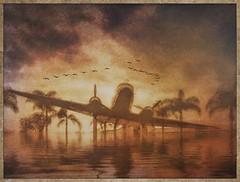 DC 3 memorial Santa Monica 2016. #reflect #snapseed #raindaze #photocopier #stackables #distressedfx #formulasapp #retro #texture #textures #americana #santamonica #dc3 (harrysonpics) Tags: reflect snapseed raindaze photocopier stackables distressedfx formulasapp retro texture textures americana santamonica dc3