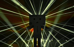 Feel it Danbo! (g3az66) Tags: feelitdanbo danbo danboard ocd tiesto