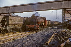 IndSt108 (PaulBrysn) Tags: industrialsteam ncb princeofwales williambagnallwb