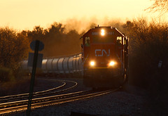 Sunset 60 (view2share) Tags: cn5481 cn canadiannational curve sunset sundown sunshine evening sd60 emd electromotivedivision engine eastbound siding sidetrack hoppercar hopper coveredhopper coveredhoppercar newrichmond wisconsin wi minneapolissub stcroixcounty deansauvola april212017 april2017 april 2017 spring springtime sign signage railway rr railroading railroads rail rails railroaders railroad rring track transportation trains tracks transport trackage train trees trackmaintenance freight freighttrain freightcars ditchlights heatwaves heatwave exhaust heat atmosphere sky