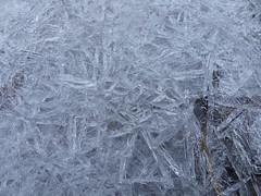 P1010576 (christophmehl) Tags: elbe wilhelmsburg hamburg germany deutschland eis ice eiskristall icecrystal