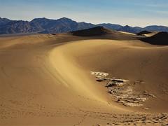 Mesquite Flat Sand Dunes (France-♥) Tags: 1224 mesquiteflatsanddunes sanddunes stovepipewells dvnp deathvalley california sable sand dunes nature morning matin