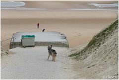 het strand op (HP025708) (Hetwie) Tags: capblancnez opaalkust sea kust coast cotedopale capgrisnez cap frankrijk strand france zee escalles hautsdefrance fr