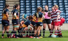 Murrayfield Wanderers Ladies V Jordanhill-Hillhead  BT Final 1-203 (photosportsman) Tags: murrayfield wanderers ladies rugby bt final april 2017 jordanhill hillhead edinburgh scotland sport