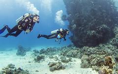 1204 35a (KnyazevDA) Tags: disabled diver disability diving owd underwater undersea padi redsea buddy handicapped paraplegia paraplegic