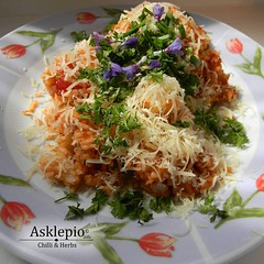 Basmati rice with chilli sauce Aji Minas Gerais, sprinkled with parmesan cheese, chervil and flowers lungwort (Asklepio.info) Tags: chilli redpepper vegetarisch chillilove papriky peppers healthyfood capsaicin pimentas ilovechilli vegetarian foodlover instafood cooking veggies homecook food chervil delicius wildfoodlove hotpepperlovers hotpepperslife vegetables foodie lungenkraut zahrada capsicum edibleplants gardner lungwort