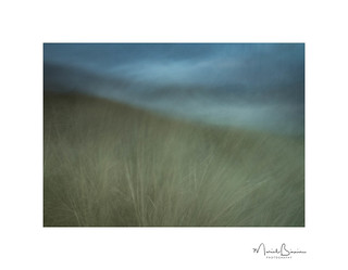 Cheswick Sand Storm