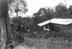 album2film142foto002 (Melanesian cultures) Tags: baliem baliemvallei sibil sibilvallei josdonkers eranotali wisselmeren papua irian jaya nieuwguinea ofm franciscanen minderbroeders missionaris
