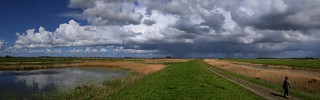 After toxid dump the Volgermeerpolder is  a new nature reserve
