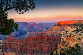 The Grand Canyon @ Arizona