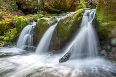MULLERTHAL- LUXEMBOURG-8 (daumy) Tags: cascade riviere eau exposition lente nature luxembourg breidweiler grevenmacher feuille mousse eclaboussure foret randonnée herbe