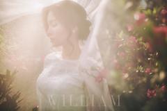 WIL_0555-5 (WillyYang) Tags: veil bride wedding bokeh sigma35art sigma35mmart 35mm canon beauty bokehlicious