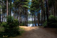 Algonquin Provincial Park (fransmith556) Tags: algonquin ontario provincialparks