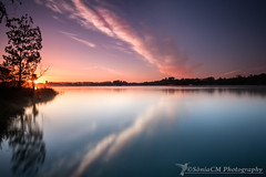Wings (Sònia CM) Tags: sky sunrise girona landscape longexposure largaexposicion llargaexposicio lake banyloes reflections reflejos reflexes morning morninglight water waterscape clouds cloudy