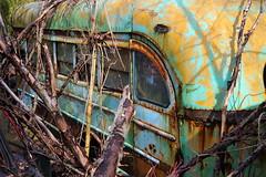 IMG_2644 (Irina Souiki) Tags: rusty crusty cars mcleansautowreckers milton ontario old oldcars