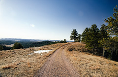 the other way down (almostsummersky) Tags: grass hike winter overlook nationalpark blackhills southdakota hill snow trees sky road morning slope curve tiretracks trail windcavenationalpark forest rankinridgenaturetrail ridge tracks rankinridge custer unitedstates us
