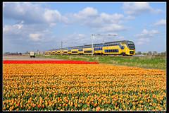 NSR-9434+9591_Hil_18042017 (Dennis Koster) Tags: nsr ns personentrein passagierstrein hillegom bollen