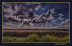 Sol darrere dels núvols (The sun benind clouds) Marjal de Sollana, la Ribera Baixa, València, Spain (Rafel Ferrandis) Tags: marjal sol núvols sollana hdr eos5dmkii ef1635mmf4l