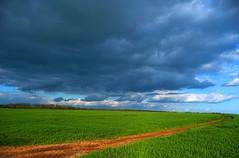 Fin de journée (BelSoq) Tags: paysage landscape campagne printemps spring nuages clouds ciel chemin champ