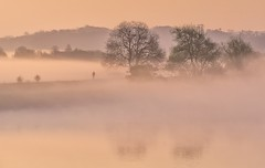 Misty Solitude (Captain Nikon) Tags: mist misty atmospheric alone lonesome solitude silhouettes embankment rivertrent river trent sunrise moody nikond7000 nikon18105mm reflections sawley derbyshire