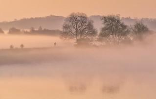 Misty Solitude