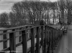Crooked FootBridge (maureen.elliott) Tags: blackandwhite bridge footbridge outdoors wheatleyprovincilapark shoreline lakeerie greatlakes southwesternontario 7dwf