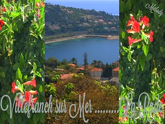 La rade en fleurs (Melody Rubeli) Tags: nature plage rade village sea mer mare alpes maritimes french riviera montagne