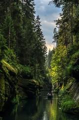 IMGP0771 (Bogdan Krawczyk) Tags: landscape river czechy kammenice