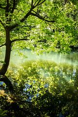 The River Frome (pixelhut) Tags: bristol uk england southwest city urban bs5 eastvillepark igerslovebs5 igersbristol river riverfrome