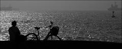 F_47A3395-BW-Canon 5DIII-Canon  70-300mm-May Lee 廖藹淳 (May-margy) Tags: maymargy blowinginthewind bw 黑白 腳踏車 海洋 貨輪 起風 波紋 剪影 背影 街拍 streetviewphotographytaiwan 線條造型與光影 linesformandlightandshadow 天馬行空鏡頭的異想世界 mylensandmyimagination 心象意象與影像 naturalcoincidencethrumylens 高雄市 台灣 中華民國 taiwan repofchina f47a3395bw 起風的時候 portrait bicycle silhouette ocean windy waves cargo ships kaohsiungcity canon5diii canon70300mm maylee廖藹淳