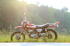 (RichardGlenSailors) Tags: 1971 motorcycle suzuki ts250