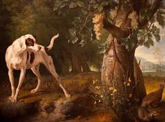 Partridge Family (Thomas Hawk) Tags: california usa dog museum painting losangeles unitedstates unitedstatesofamerica lacma partridge partridges losangelescountymuseumofart landscapewithadogandpartridges alexandrefrancoisdesportes