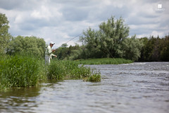 Hunting for Browns - IMG_0399_web (Brad Clarance) Tags: fishing flyfishing trout