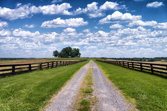 Leaving there too soon (Sky Noir) Tags: road blue fence landscape countryside day cloudy country blueskies puffy fenceline whiteclouds dualtrack