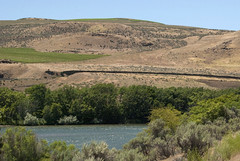 Oregon Trail ruts at Deschutes River Crossing (Steve_Riddle) Tags: oregontrail pioneer oregontrailruts pacificnorthwesthistory deschutesrivercrossing