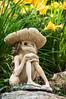 Mushroom Head (nicpic) Tags: flowers flower mushroom statue garden gnome eyes sitting head sprite